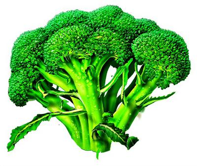 Broccoli  Veges in Uganda