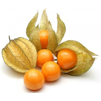 Cape Gooseberries in Uganda