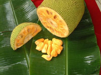 Jackfruit Cut in Slices Uganda