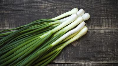 Spring Onions in Uganda