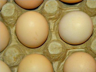 Kuroiler Eggs in Uganda