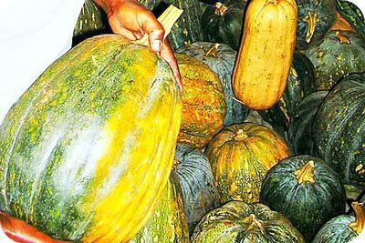 Pumpkins in Market , Africa