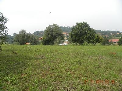 50 by 100 plot Bwebajja Uganda view 1