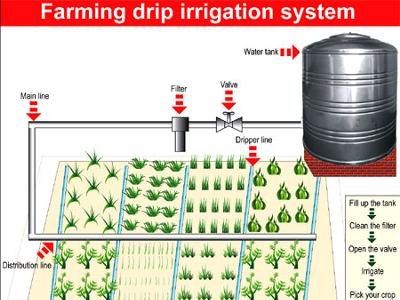 Uganda Drip Irrigation Tech from Isreal