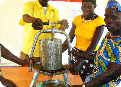 Extracting Honey with a Honey Press in Uganda