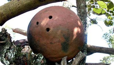 Clay Beehive in Uganda